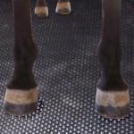 Hamerslag | 6mm dik | 180cm breed | 10m lengte