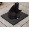 Rubber voor honden thumbnail